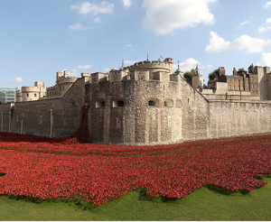 888,246  poppies spill from the walls of the Tower of London; one for each British soldier killed in WWI.